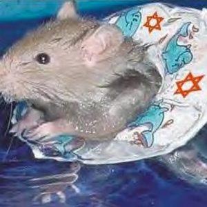 Blame It on Israel