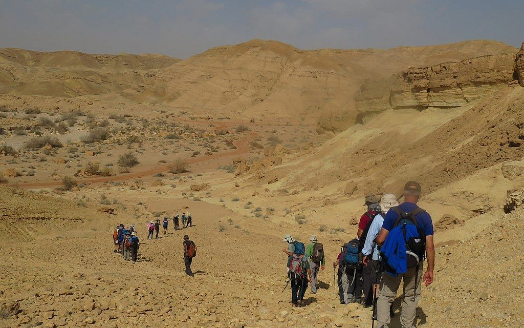 A portion of the 40-odd Israelis who hiked from Petra to Avdat along the ancient Incense Route, February 2018. (courtesy)